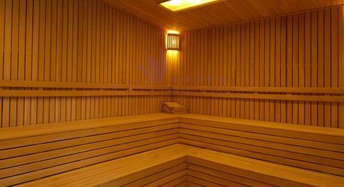 safran-termal-sauna